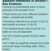Meeting the New Arsenic Standard with a New Iron-Based Adsorbent Media: POU Applications