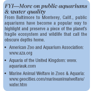 In the Aquarium with Ozone: A Matter of Living Clearly?