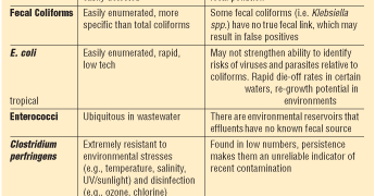 Microbial Issues: New Methods for Detention of Waterborne Microbial Contaminants
