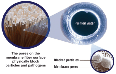 New Membrane  Point of Entry Filtration System  Certified as A disinfection solution for all water sources