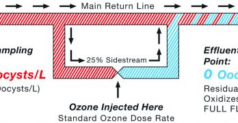 Secondary Disinfection for Public Swimming Venues: Ozone versus UV