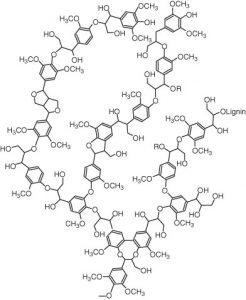Figure 1. Molecular structure of lignin