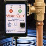 Water shut-off system