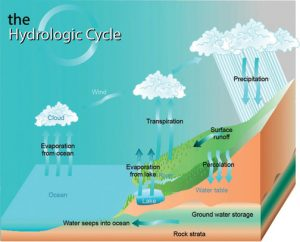 Jul2016_Michaud Figure 1 Hydrologic Cycle_Reyneke 0314