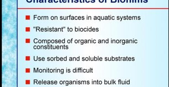 Sphagnum Moss, Bacterial Biofilmand Water Quality