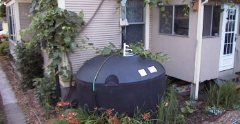 Disinfection of Rainwater Catchments: Drinking Water From the Sky