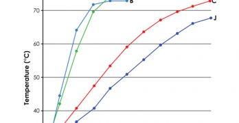 Catalytic Carbon, Part 1: Fundamentals